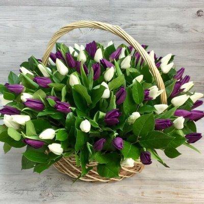 Корзина из белых и фиолетовых тюльпанов Моника