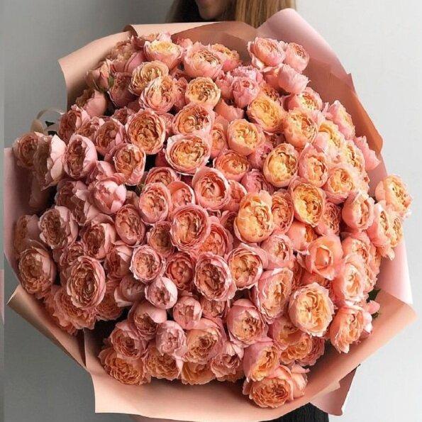 Букет кустоваой пионовидной розы Венеция