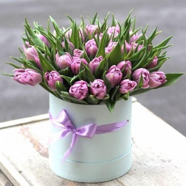 Коробка из фиолетовых тюльпанов Мари