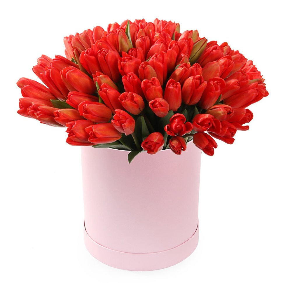 Коробка красных тюльпанов Ламбер
