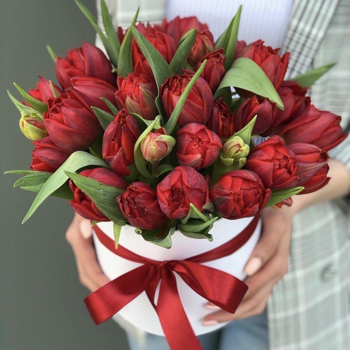 Коробка красных тюльпанов Камила