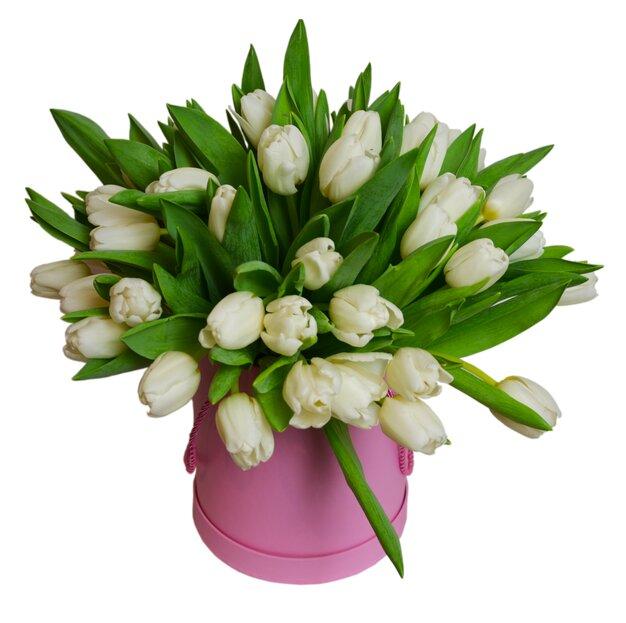 Коробка белых тюльпанов Нина