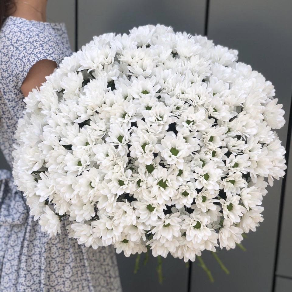 Букет из белой ромашковой хризантемы Воздушное облако