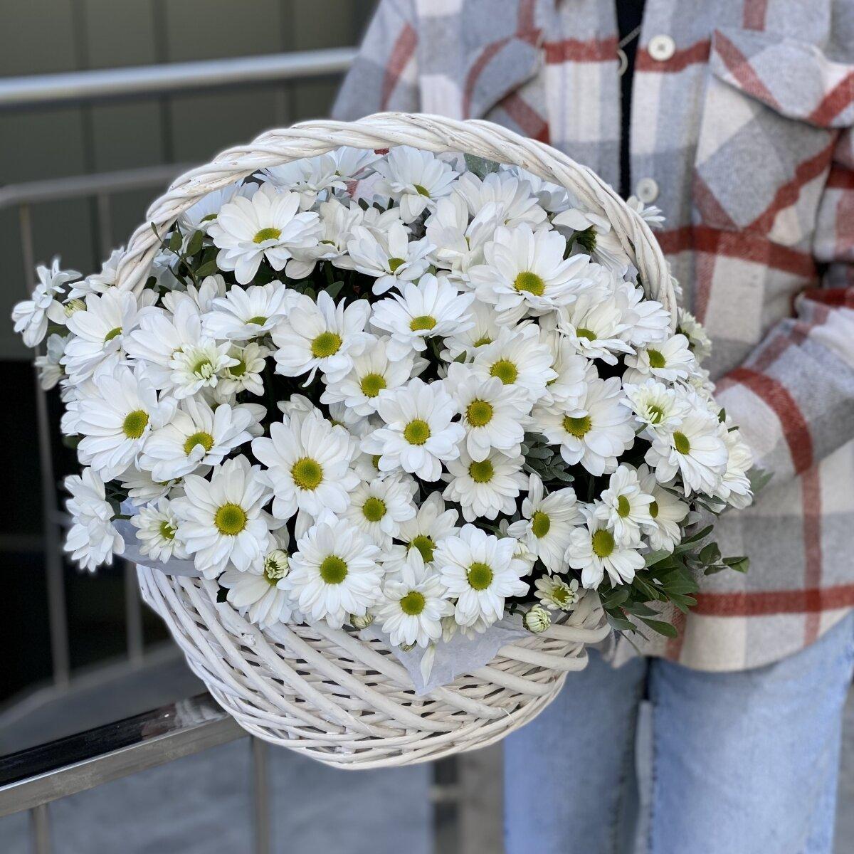 Корзина из белой ромашковой хризантемы